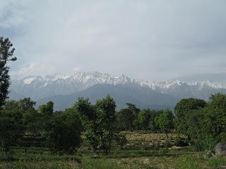 Palampur Himachal Pradesh