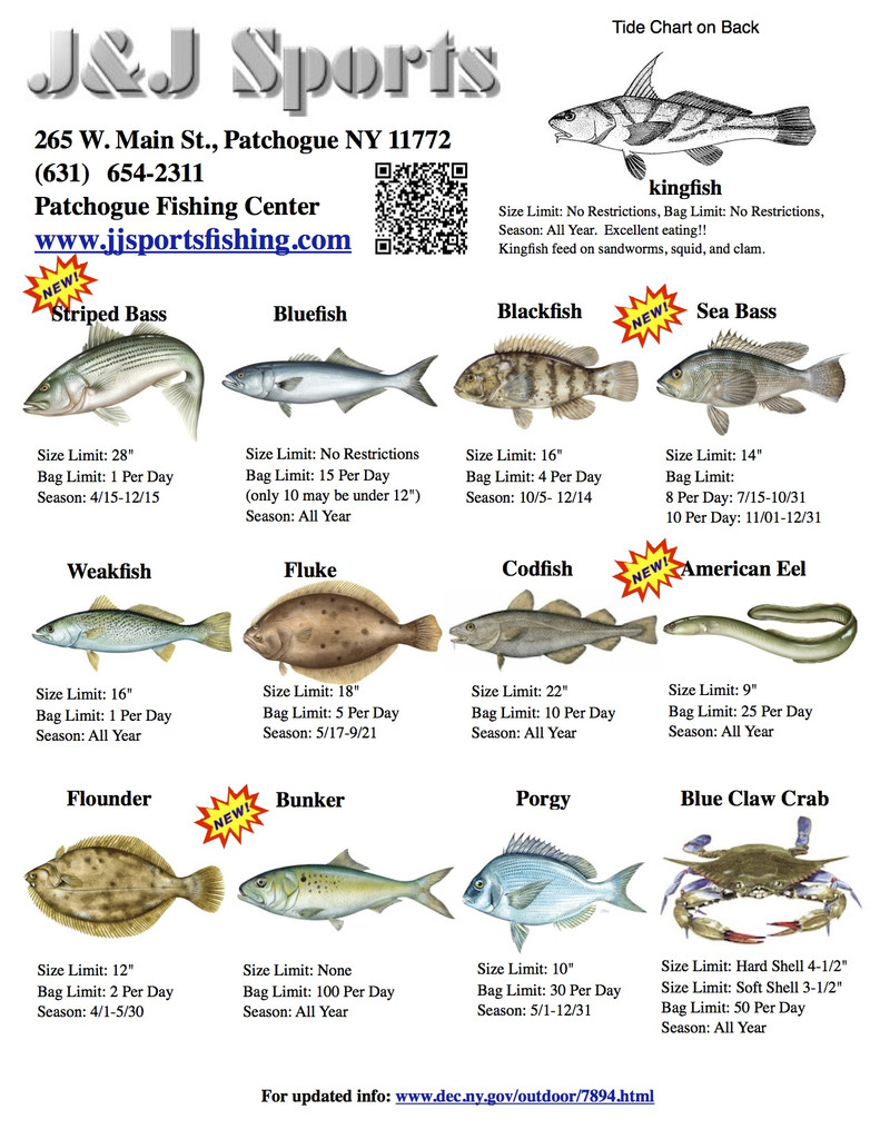 Nyack college fishing club blog fishing how to party for Ny saltwater fishing license