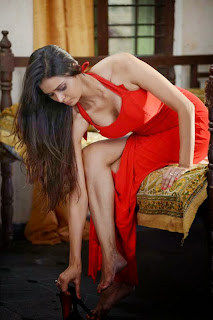 Meenakshi Dixit spicy stills at Adavi Kachina Vennela Movie