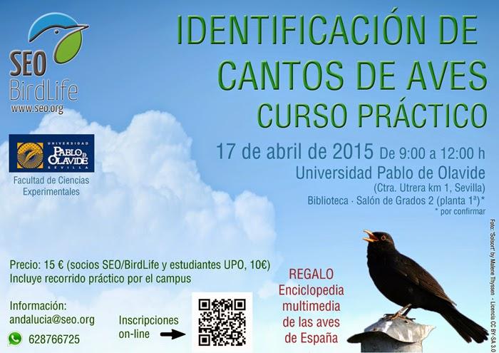 Curso de Identificación de cantos de aves. Curso práctico en Sevilla. SEO/BirdLife y Universidad Pablo de Olavide.