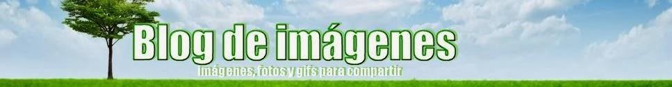 Blog de imágenes