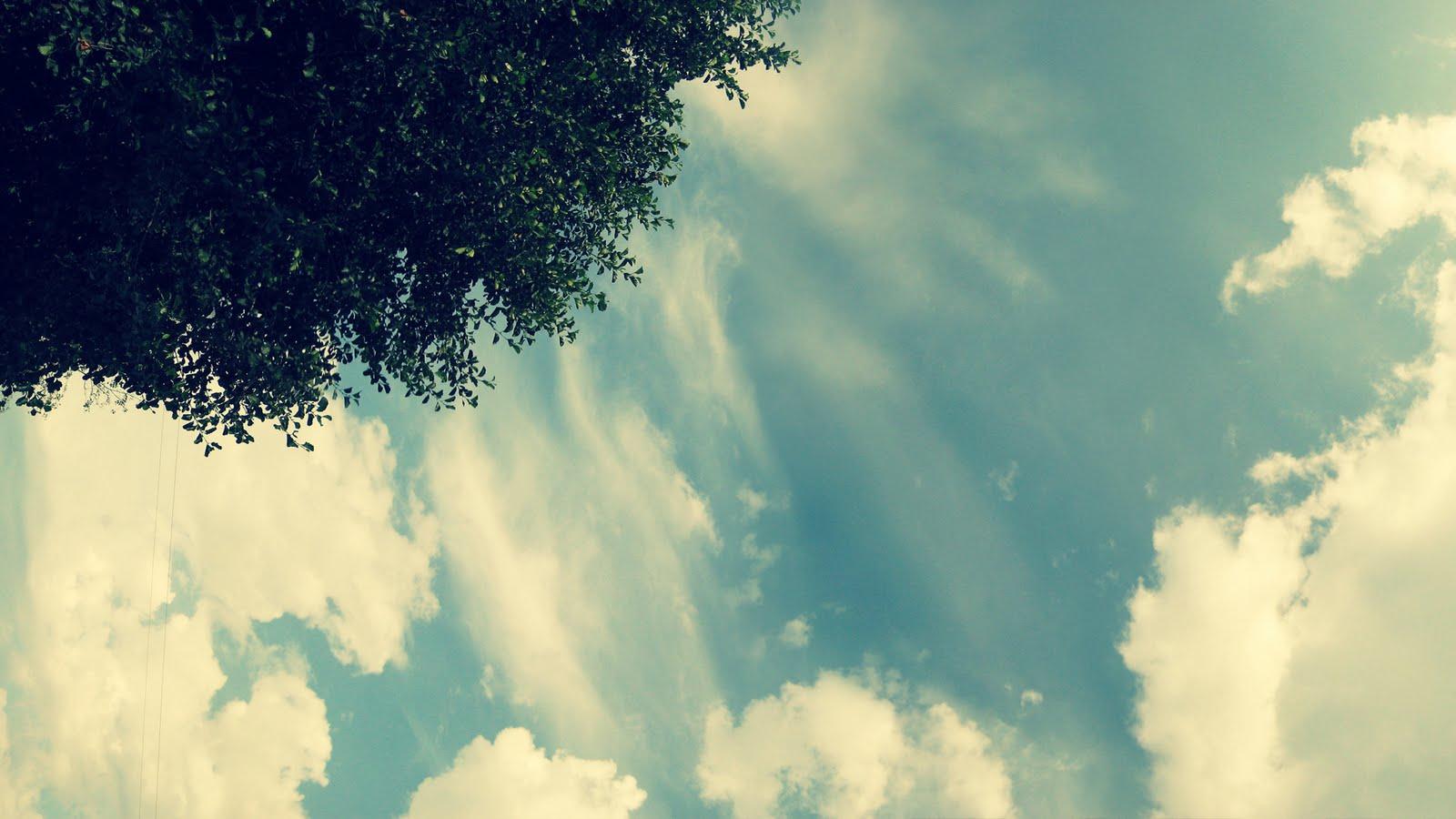 http://3.bp.blogspot.com/-i7UAghqtYDI/TiJhOcJ0EvI/AAAAAAAAArA/_JrRaRMwGbw/s1600/Amazing+Nature+Wallpapers+59.jpg