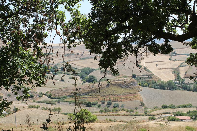 vacanza, agosto, Sicilia, Noto, holiday, Sicily