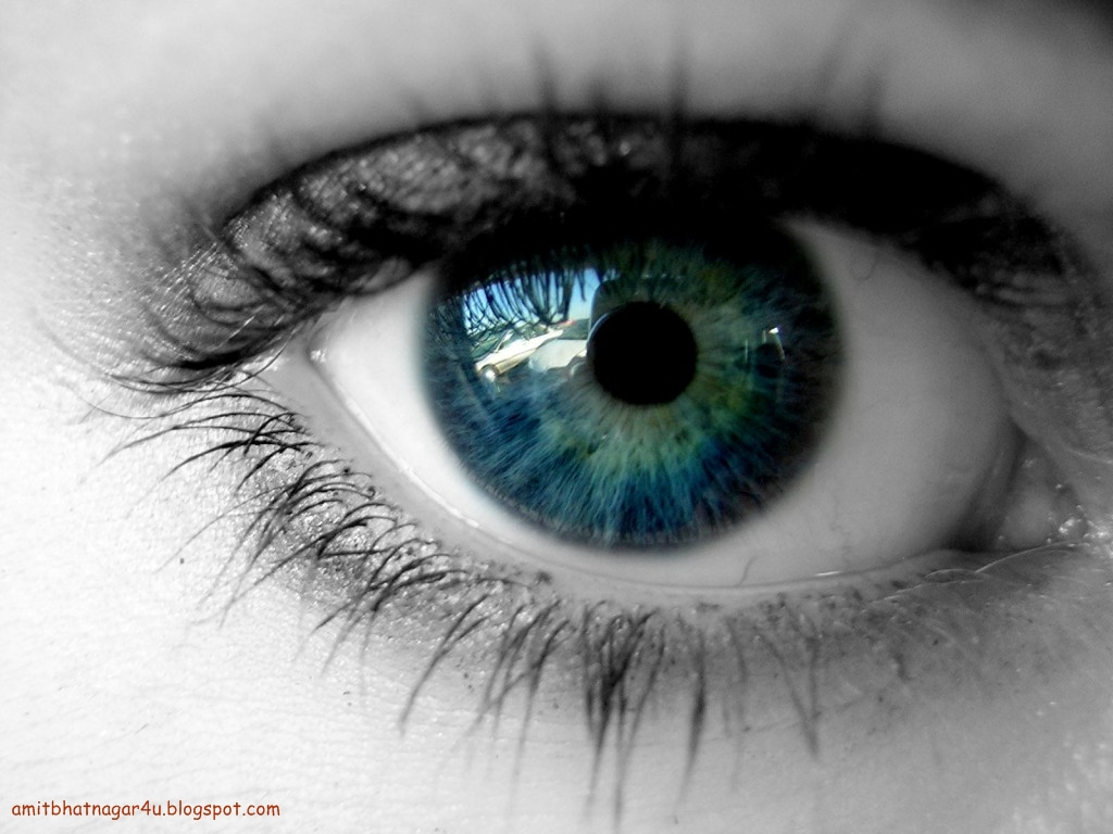 Awesome Facts About Human Eyes