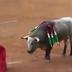Τα βασανιστήρια των ταύρων...