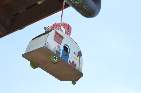 bird trailer