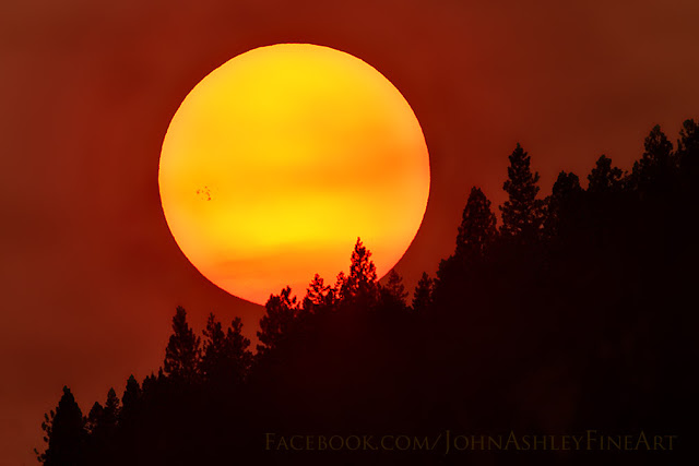 Sunspot AR 2403 (c) John Ashley
