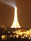Sparkly Eiffel Tower (poor photo)