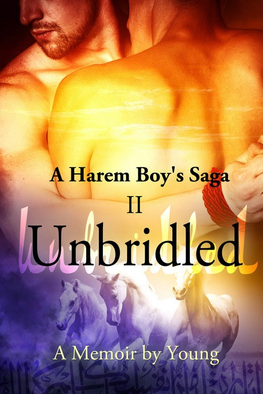 http://www.amazon.com/Unbridled-Harem-Boys-Saga-Book-ebook/dp/B00L8F1RYO/ref=la_B00CENKJKM_1_2?s=books&ie=UTF8&qid=1421655078&sr=1-2
