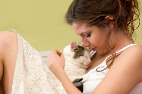 Cat Fleas on Humans