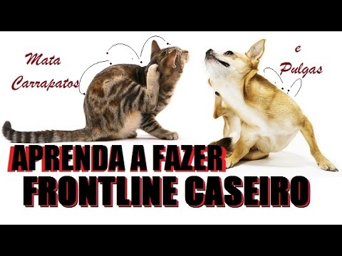 Aprenda a fazer Frontline Caseiro