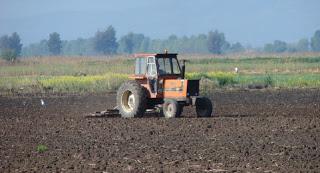 ΟΙ αγροτικές ενισχύσεις σε προυπολογισμό λιτότητας
