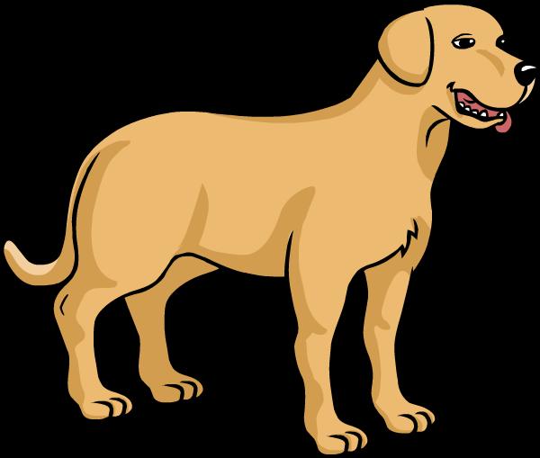 Perro labrador dibujo - Imagui