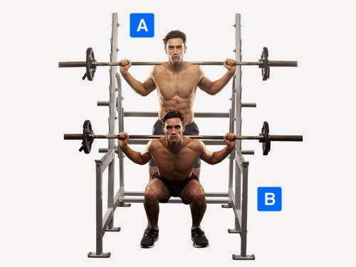 Barbell squats, barbell squat