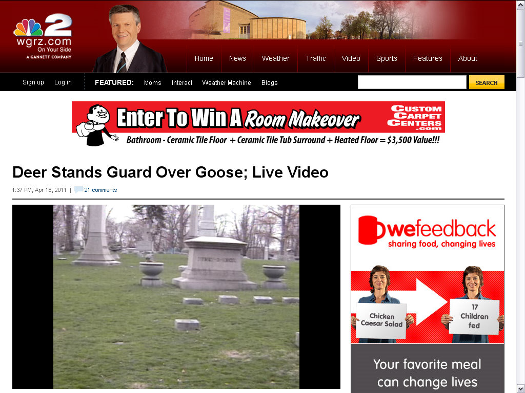 wgrz live goose deer cemetery webcam 16april2011 In the newsgroup alt.binaries.pictures.erotica.asian.female you'll mostly ...