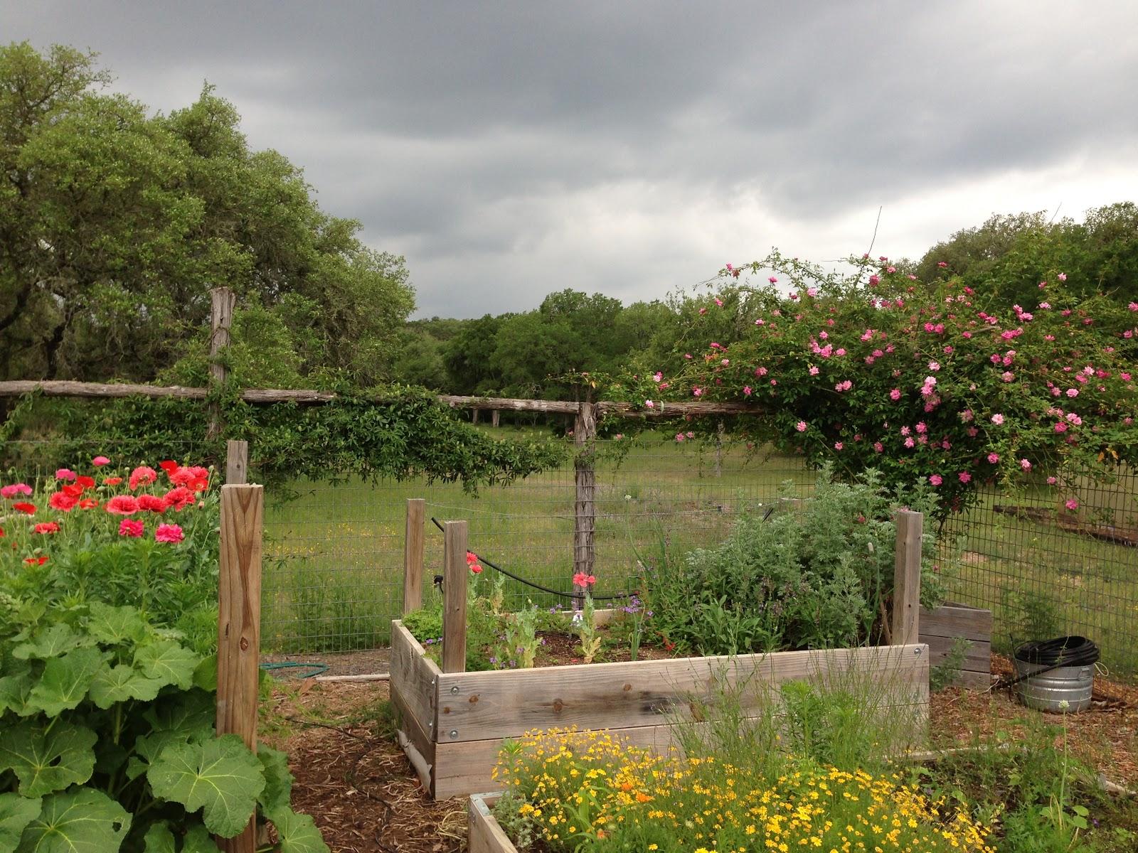 Itu0027s Going To Rain, I Think...love Spring Rains!
