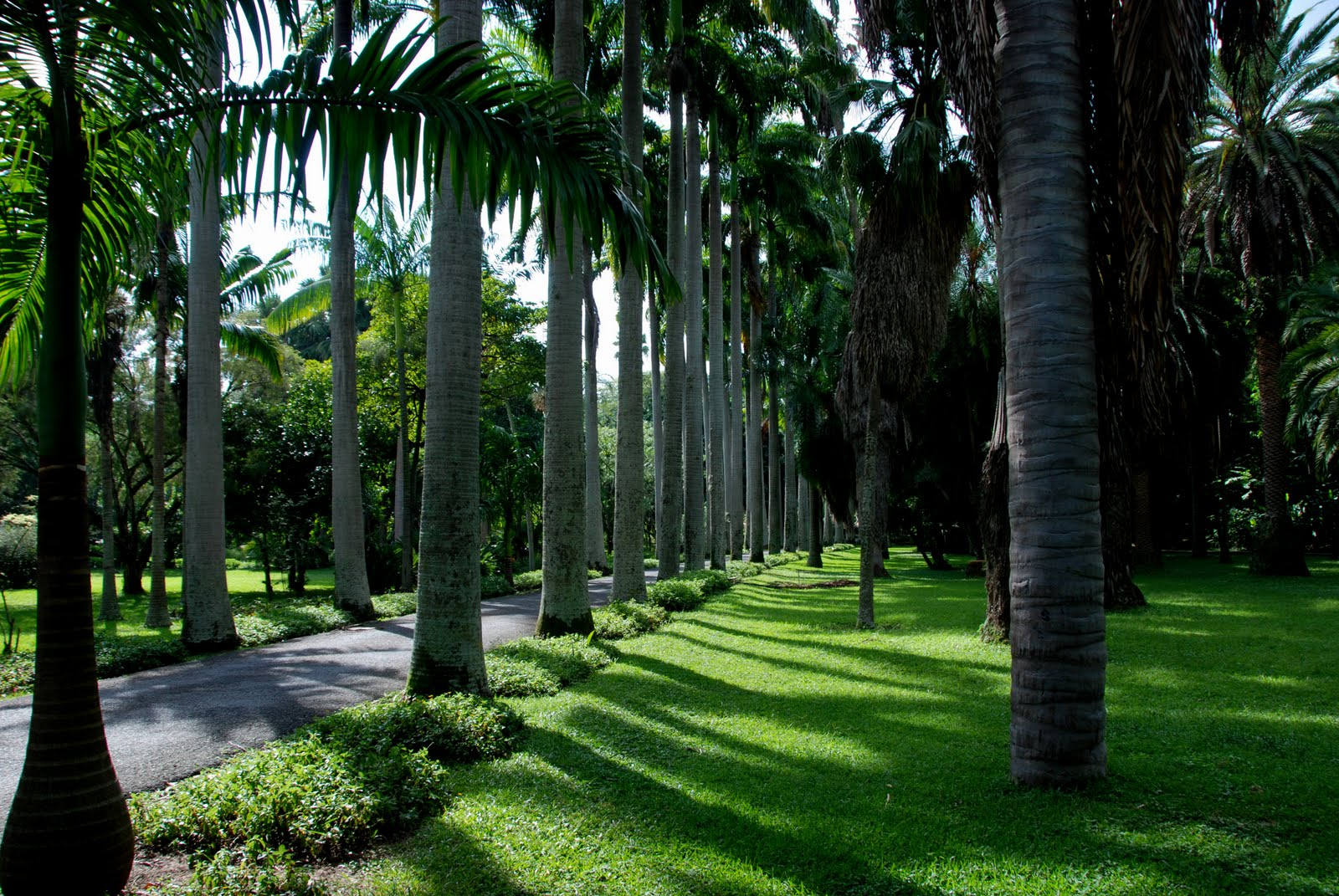 El blog del jard n v encuentro jardines bot nicos for Paisajismos en jardines