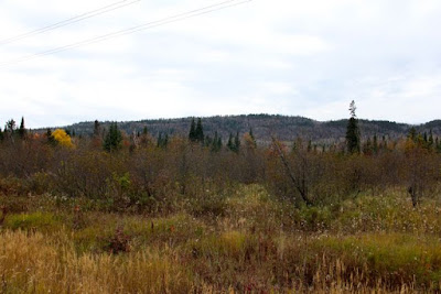 northern Minnesota's future: mountains or mine tailings?
