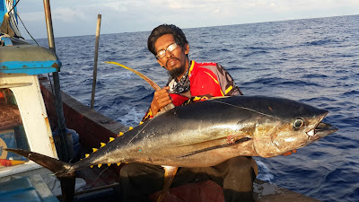 Cara mancing tuna sirip kuning dengan berhanyut