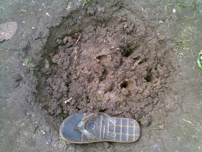 Tempat Ditemukan Sepatu Emas Misterius