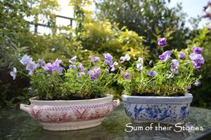 Pretty Garden Planters
