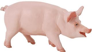 Cerdo o chancho doméstico