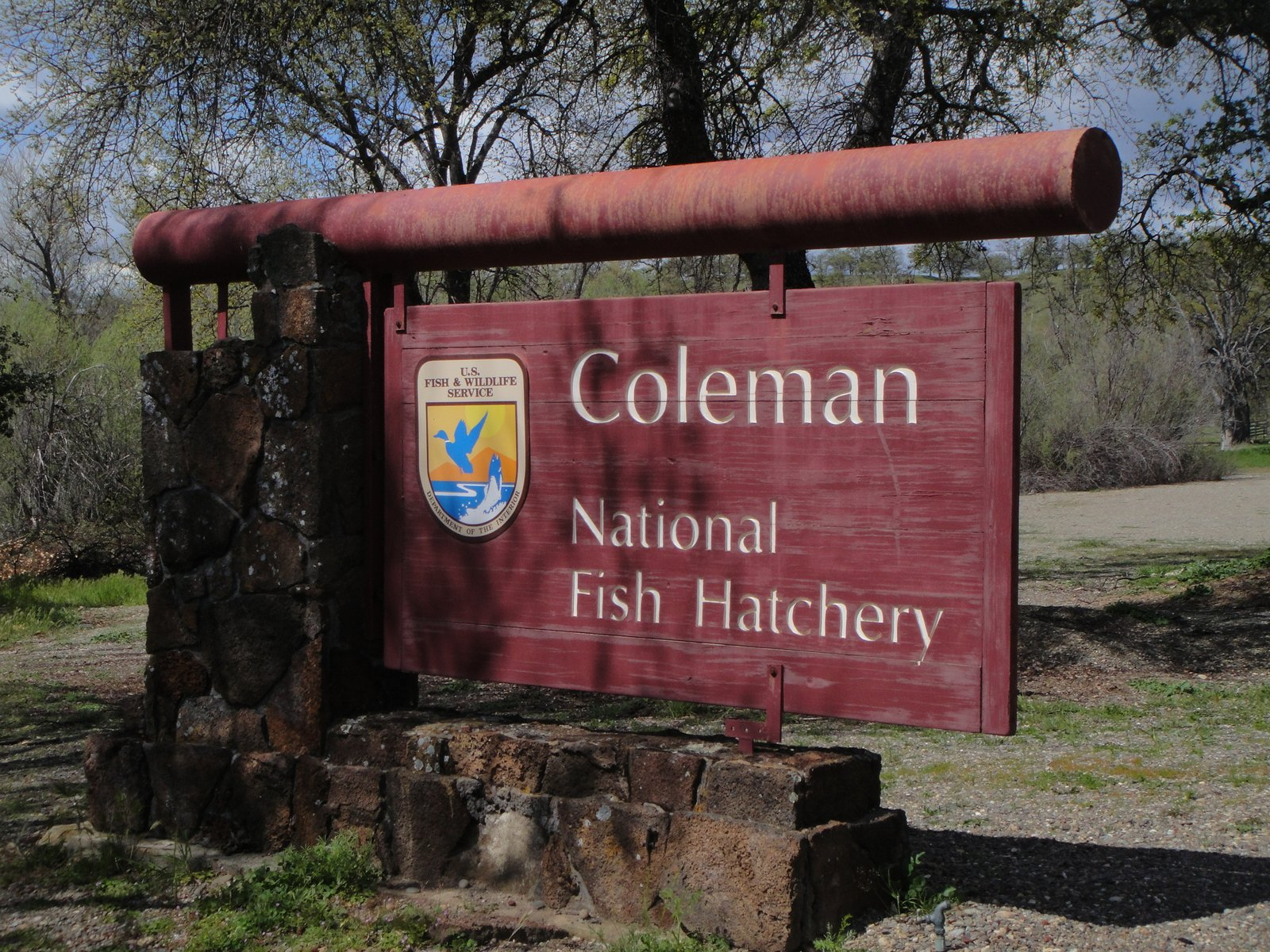 Tom and donna full timer rv blog coleman national fish for Coleman fish hatchery