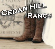 Cedar Hill Ranch