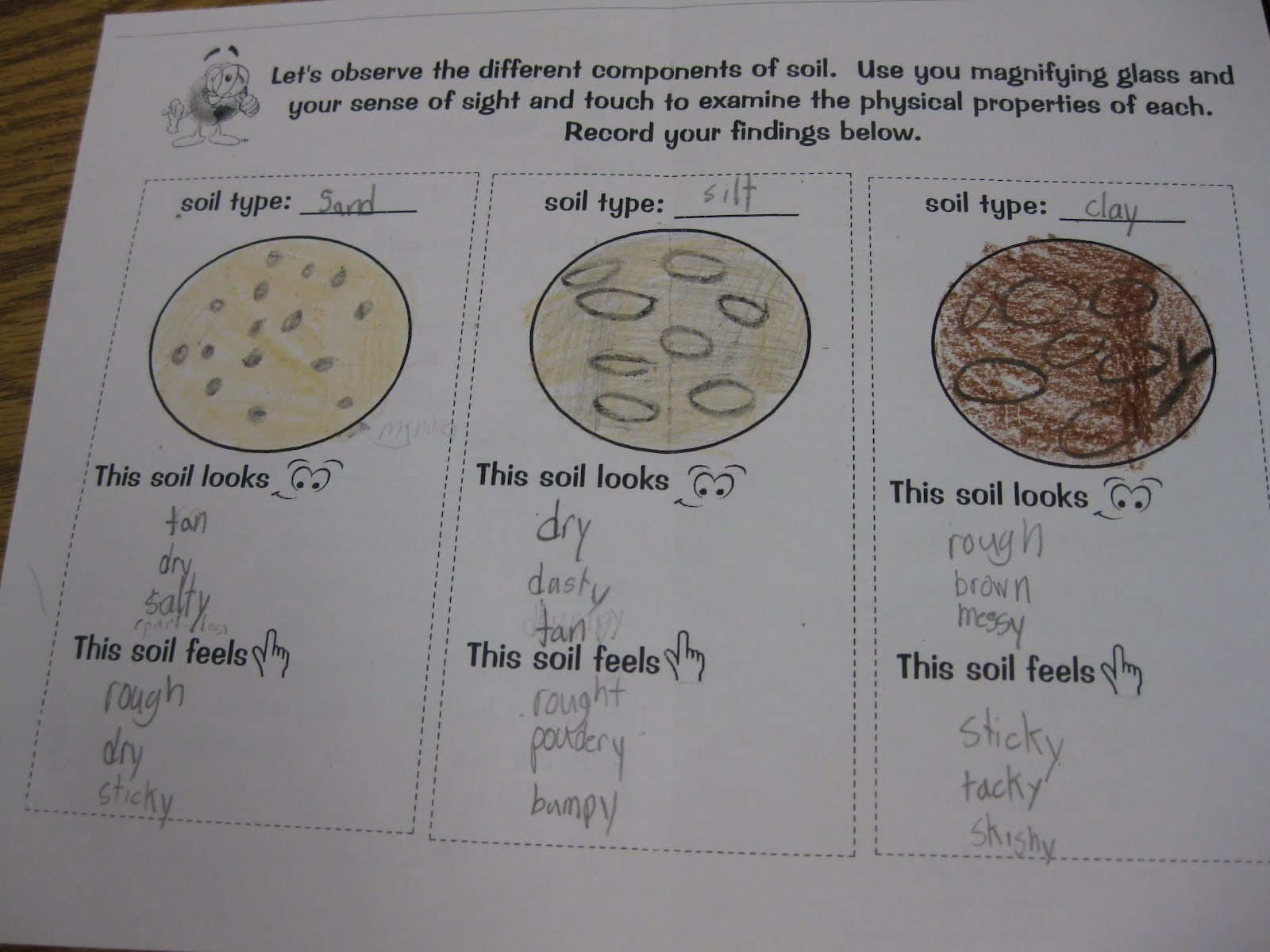 Third grade thinkers types of soil investigation and for Soil investigation report