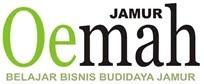 Panduan Bisnis Budidaya Jamur Tiram