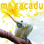 mrcacadu.ro = audio, video, games and facts – in one word: entertainment
