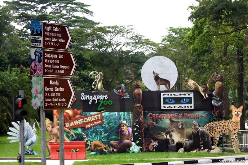 kebun-binatang-di-singapura