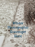2015 Winter Photographic Scavenger Hunt