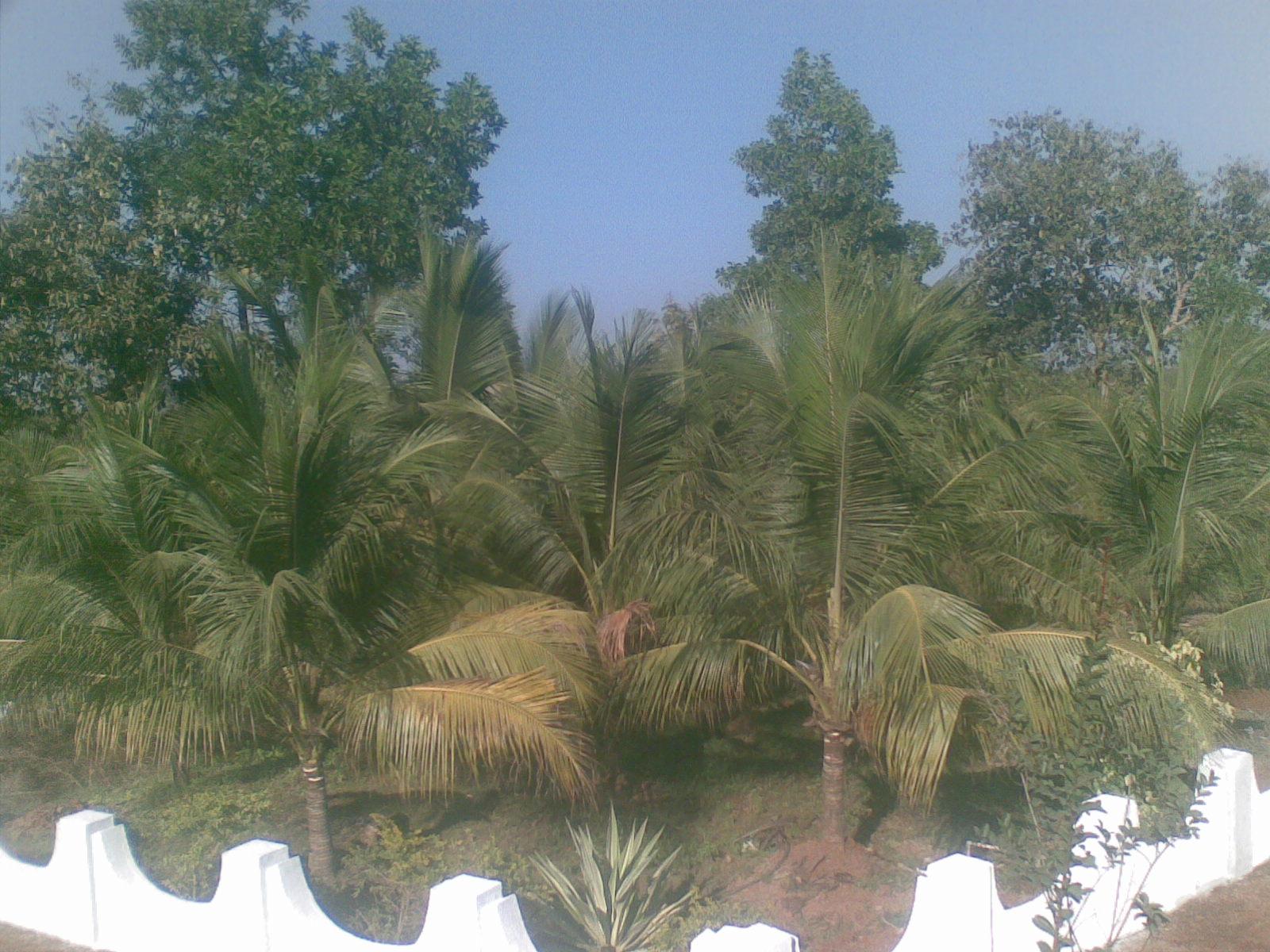 Shree Ganesh Farmhouse Murbad Farm House Near Mumbai