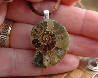 Ammonite fossil pendant on brown rat tail cord by shore debris