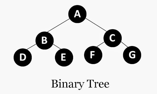 C Program to Create a Binary Tree Using Recursion [Linked Representation]