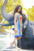 Nandita swetha glamorous photos-thumbnail-10