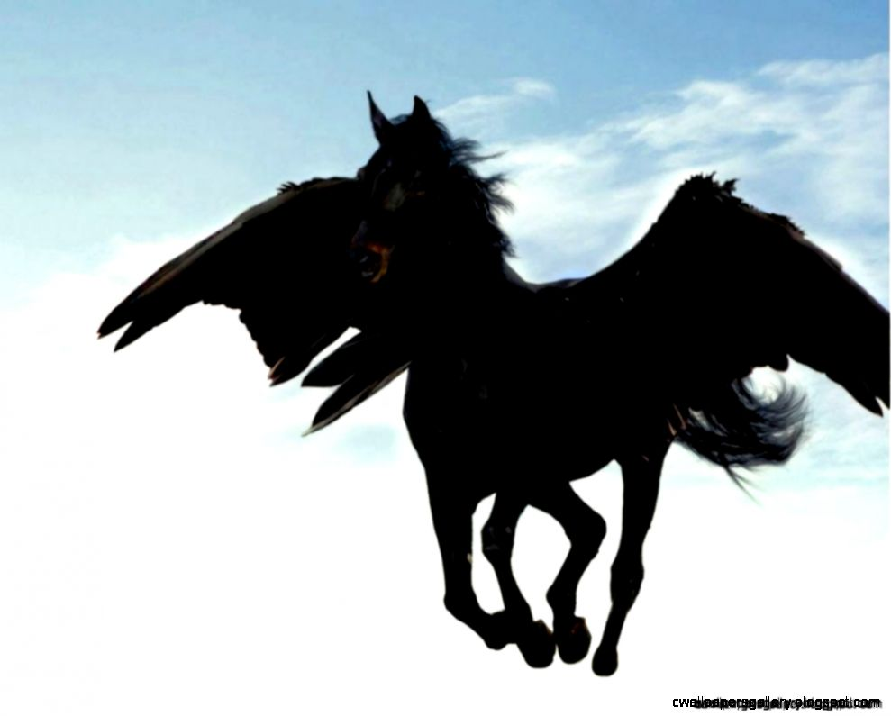 Black Pegasus Horse Flying  Wallpapers Gallery