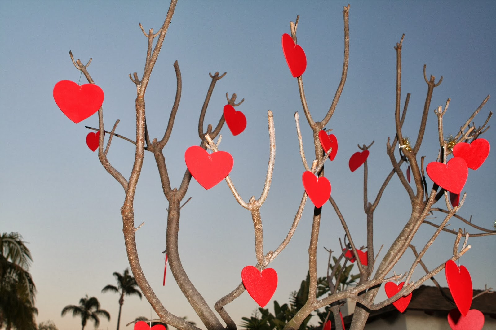 Love Tree - Valentine's Day 2014