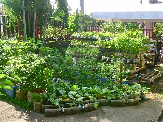 Nice Plants And Soil Isnu0027t Expensive. You Will Be Able To Get A Good Amount Of  Soil And Plants With A Small Budget. Set Up A Budget Amount That You Want  To Spend ...