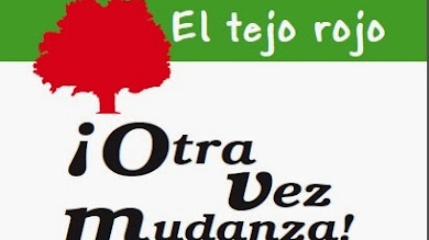 ¡Otra vez mudanza! de Beatriz Giménez de Ory