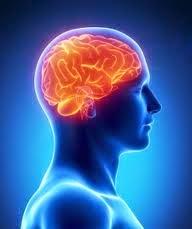 Neurontin xanax combo