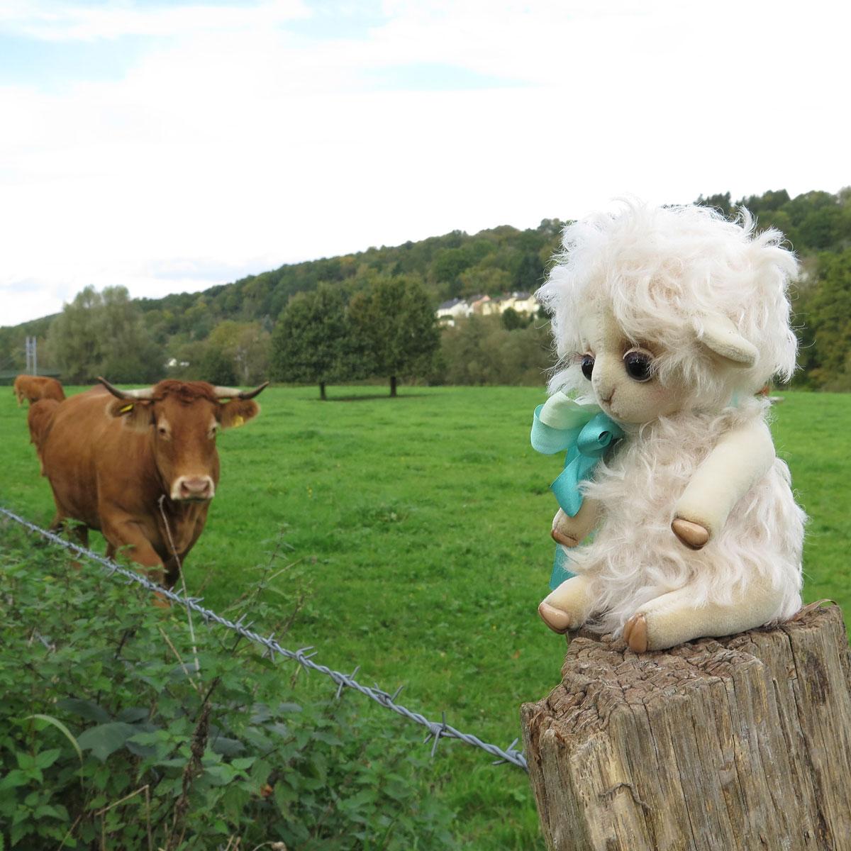 Овечка и корова
