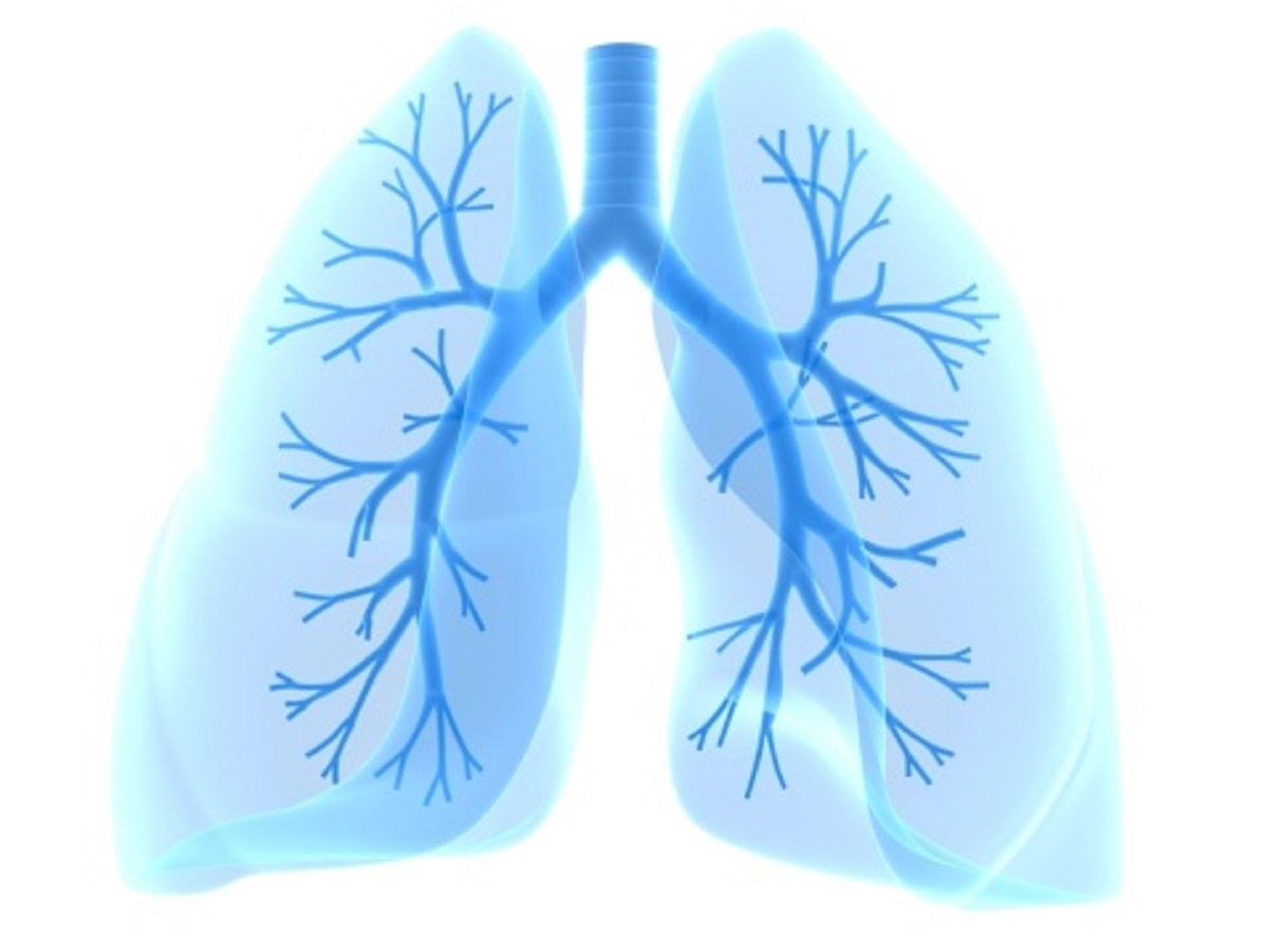 13 best natural ways for cleaning your lungs video woobleweb it s been observed that even former smokers who quit years ago have traces of lung damage