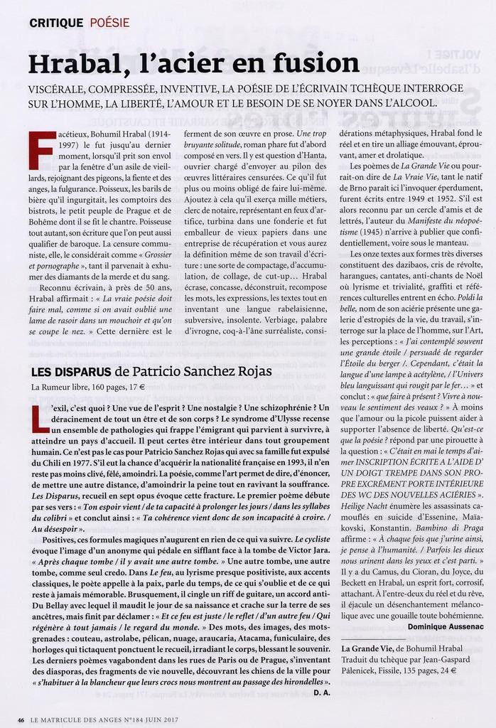 Le Matricule des Anges N)&!' Juin 20°17 - Patricio SANCHEZ ROJAS