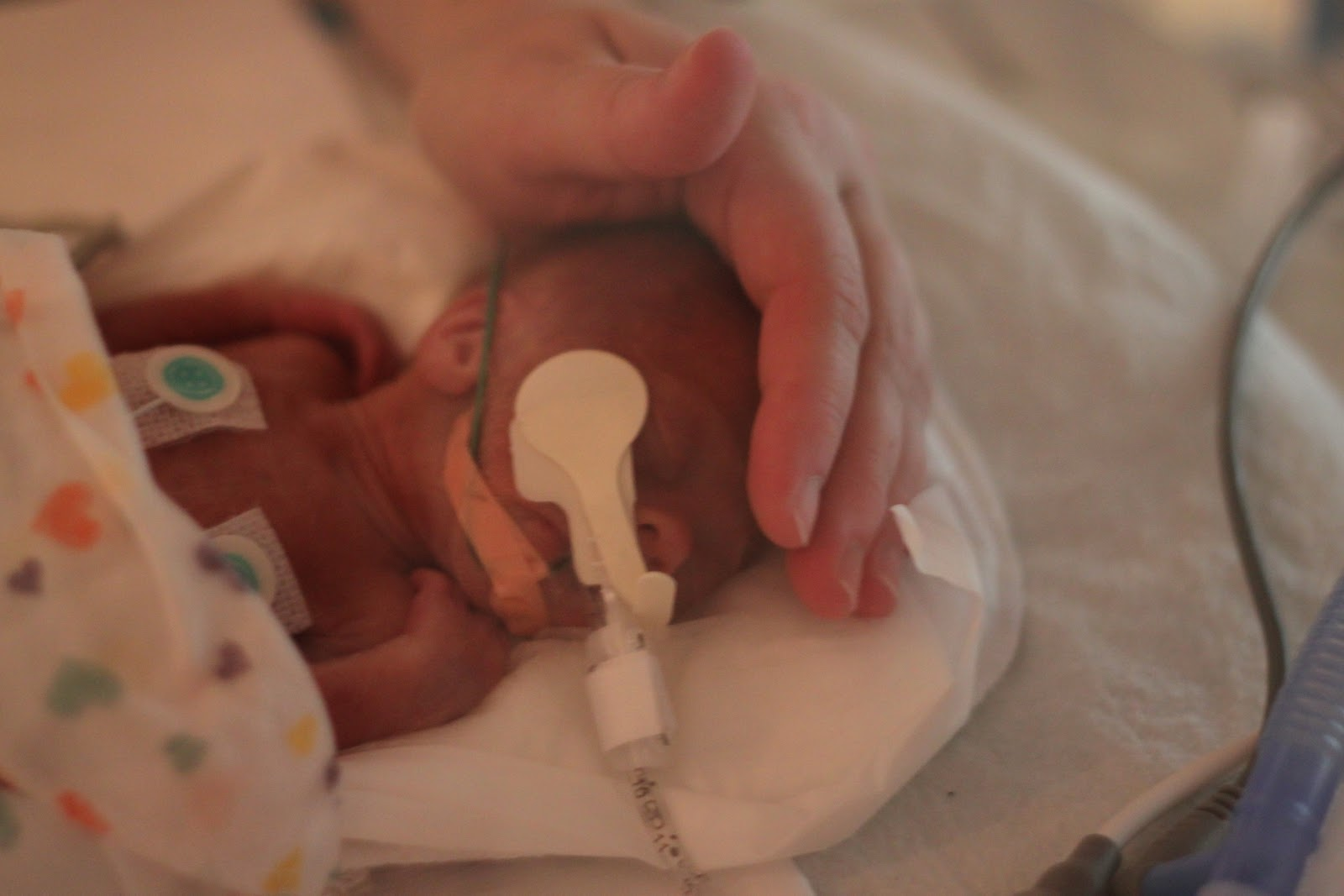 The Baby Born at 24 Weeks | Celebrate Every Day With Me