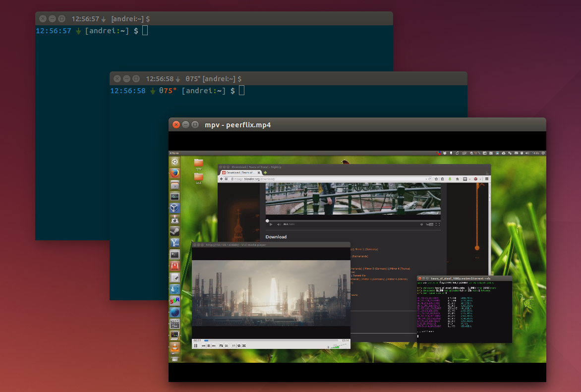 Ubuntu 14.04 Borderless window decorations
