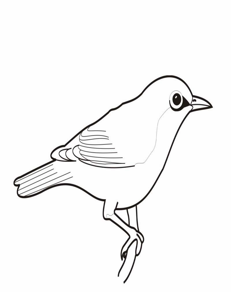 Mewarnai Gambar Burung AyoMewarnai