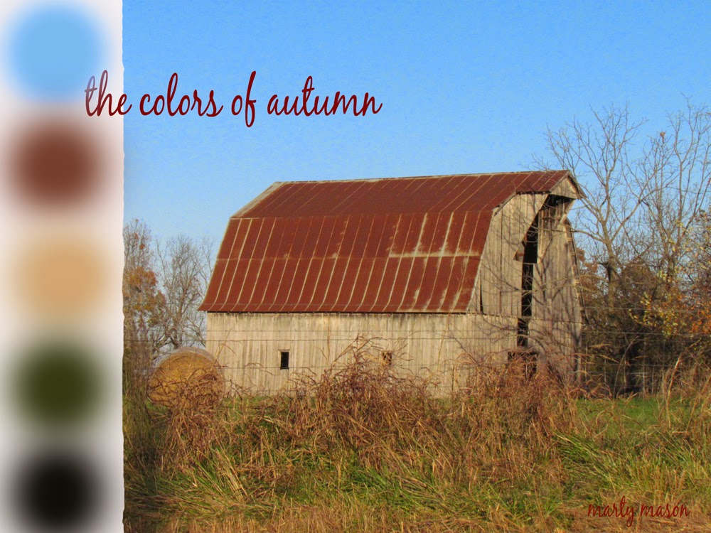 The Colors of Rural Autumn:  Marty Mason