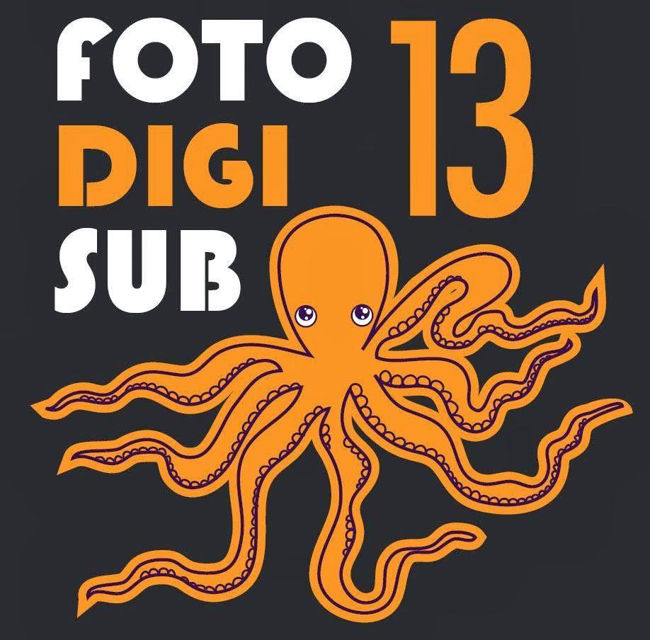FOTODIGISUB 2013